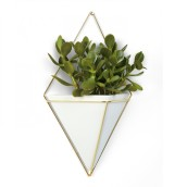 trigg_trigg_wall_group_white_brass_prop_umbra